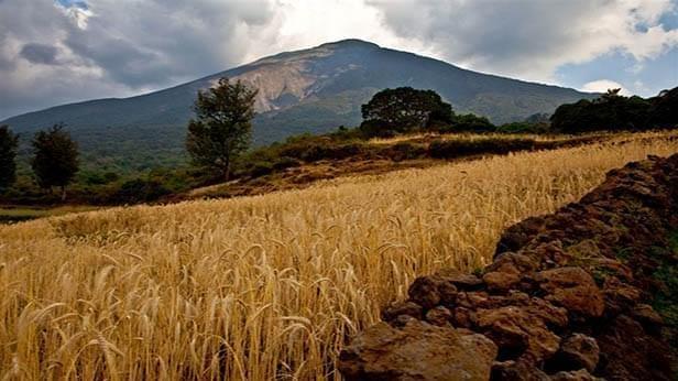 Photo of Congo Landscape