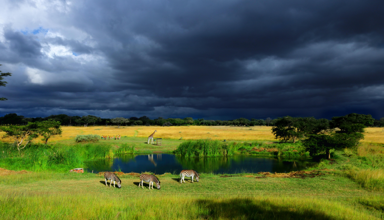 Zimbabwe-Africa-Benjamin-Van-Der-Merwe