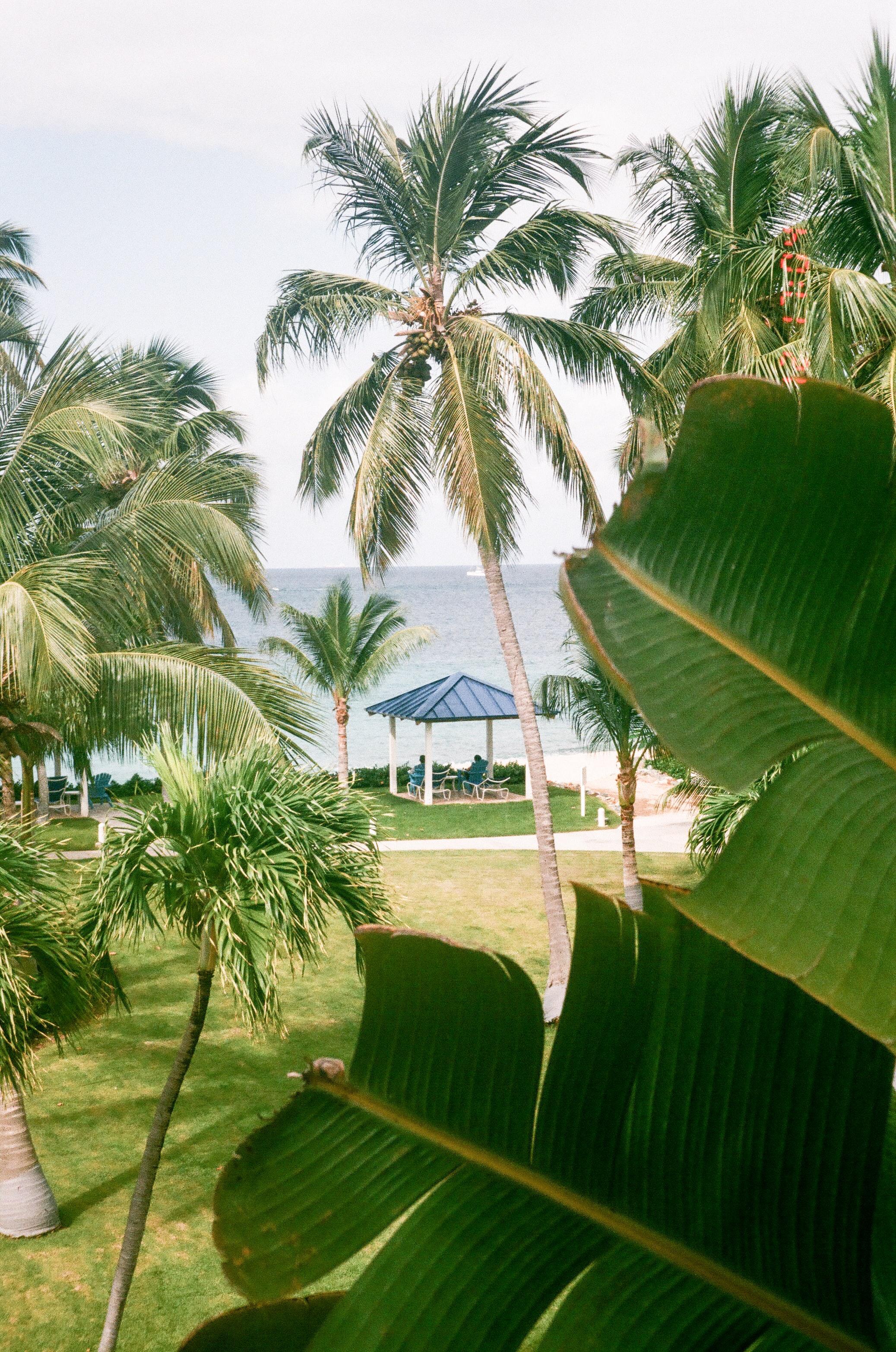 Livingston,-Caribbean-Coast-Lux-Productions