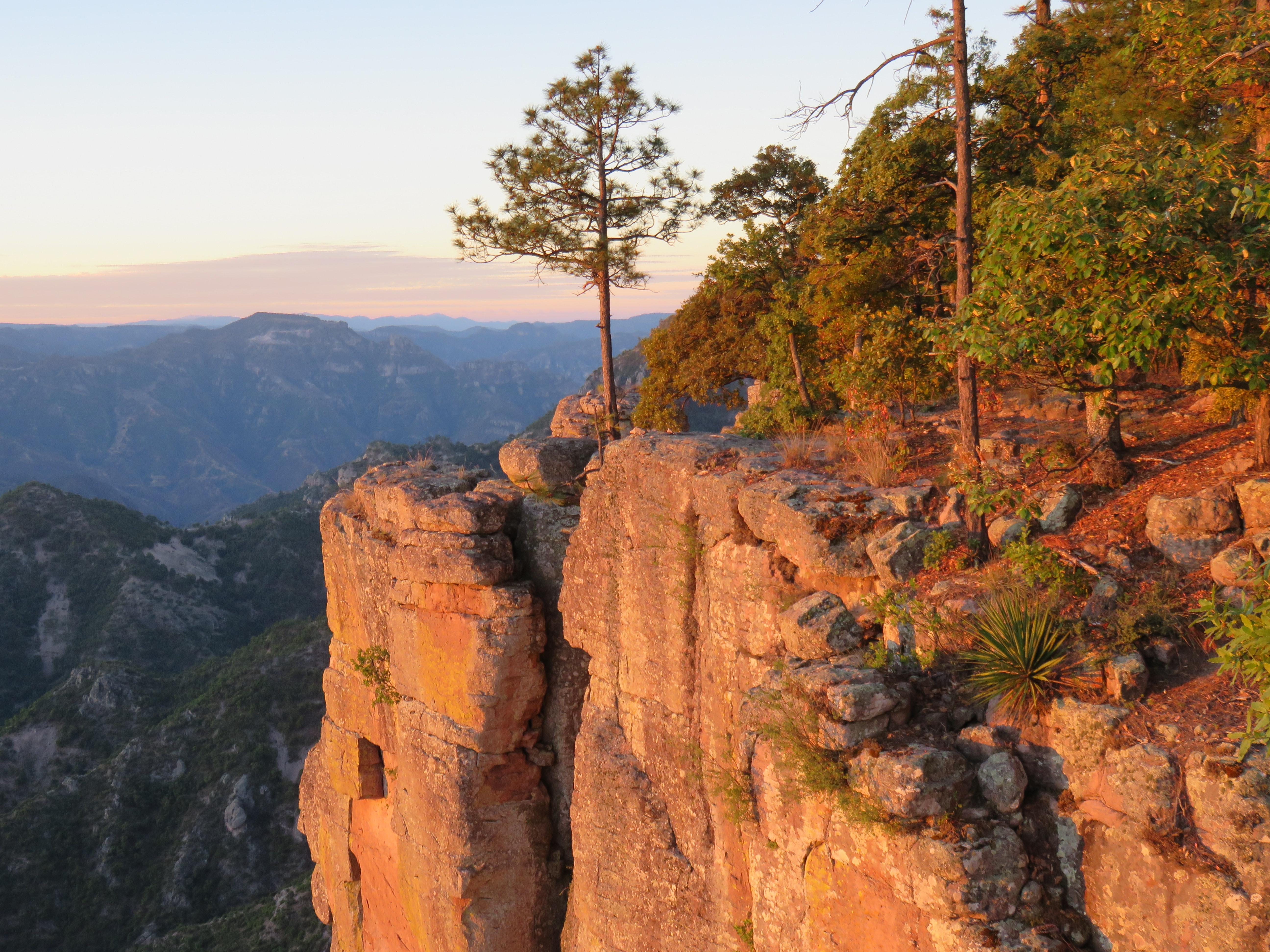 Copper Canyon Photo by Sandra Dempsey