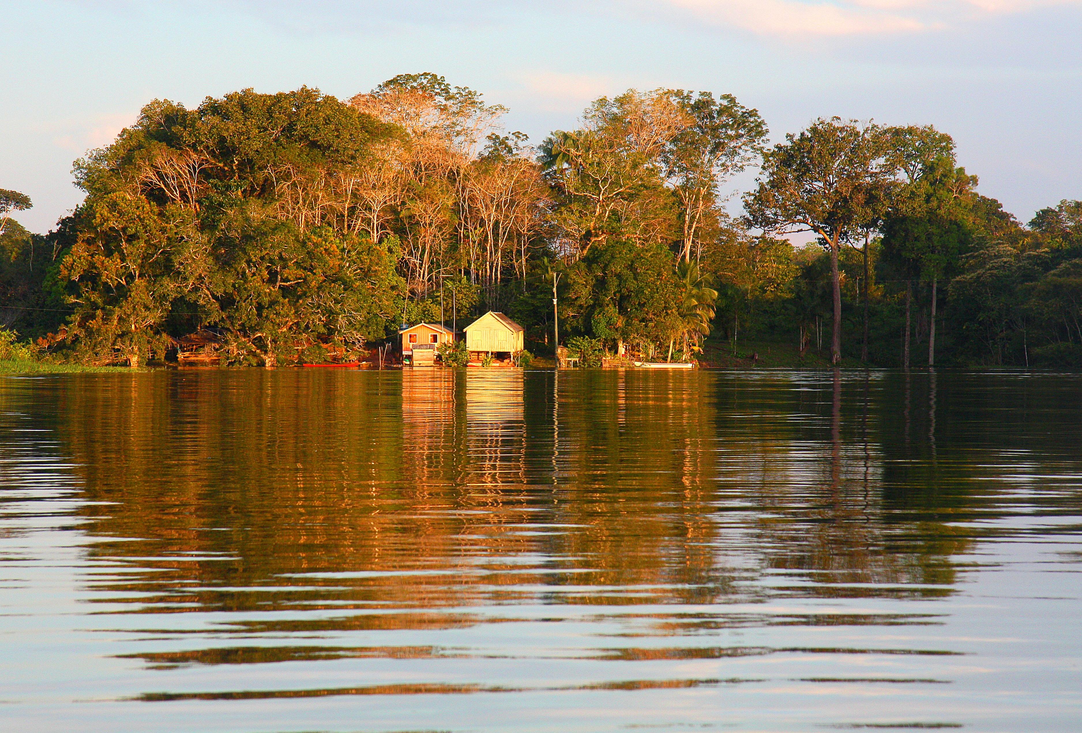Brazil-Amazon-Nareeta-Martin
